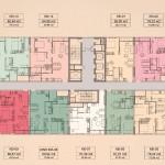 Thiết kế Block Kinh Đô Tara Residence
