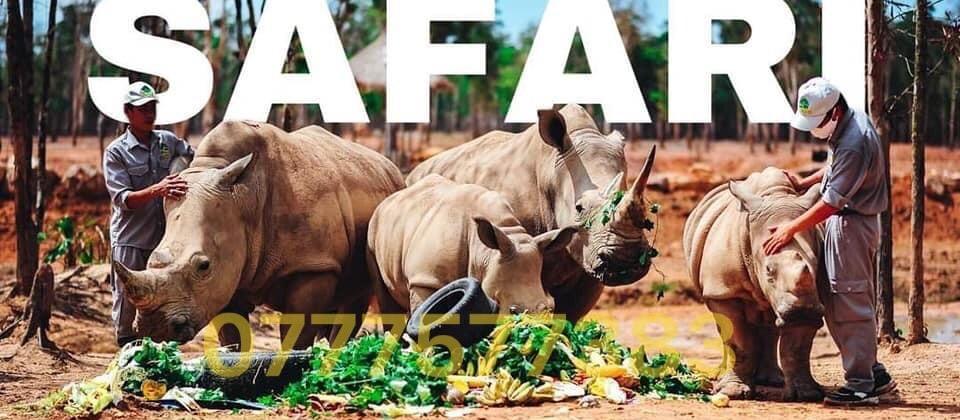 http://banchungcusaigon.com.vn/gioi-thieu-ve-khu-du-lich-sinh-thai-safari-binh-thuan.html